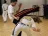 capoeira_charlesvanegas_001