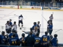 Men\'s hockey vs Laurier