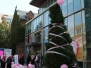 Pink Hijab Day 2013