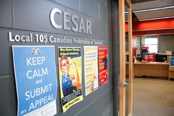 """A wall which has a sign of the name """"CESAR"""" and signs, such as one reading """"Keep calm and submit an appeal"""""""