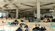 The SLC beach floor, where students are studying
