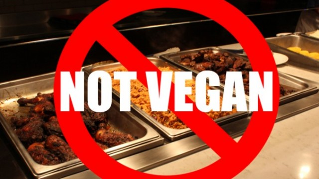 People with dietary restrictions are not happy about the food options at Ryerson cafeterias. PHOTO: Annie Arnone