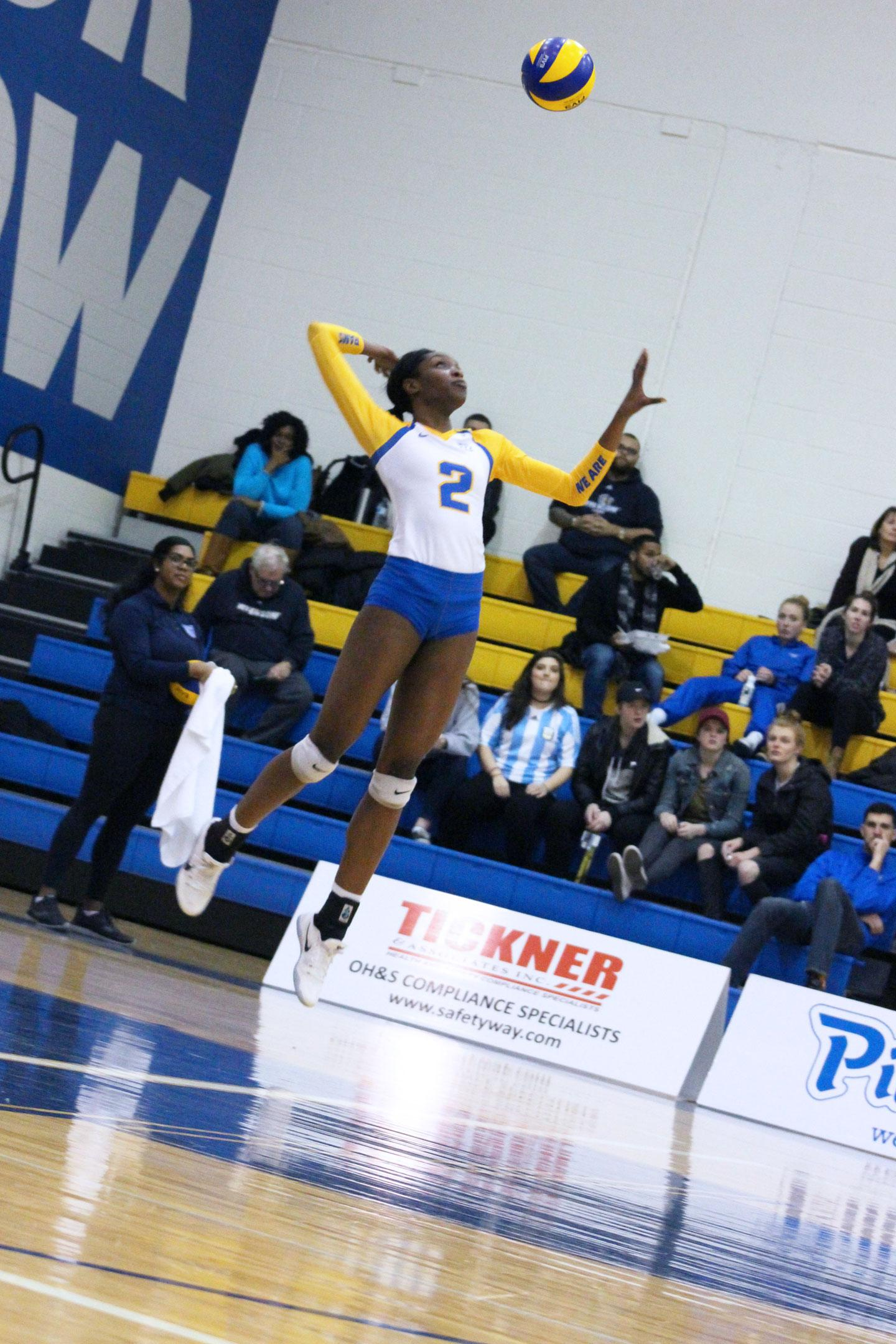 At the Womens Volleyball game, a Ryerson player jumps up to strike the ball.