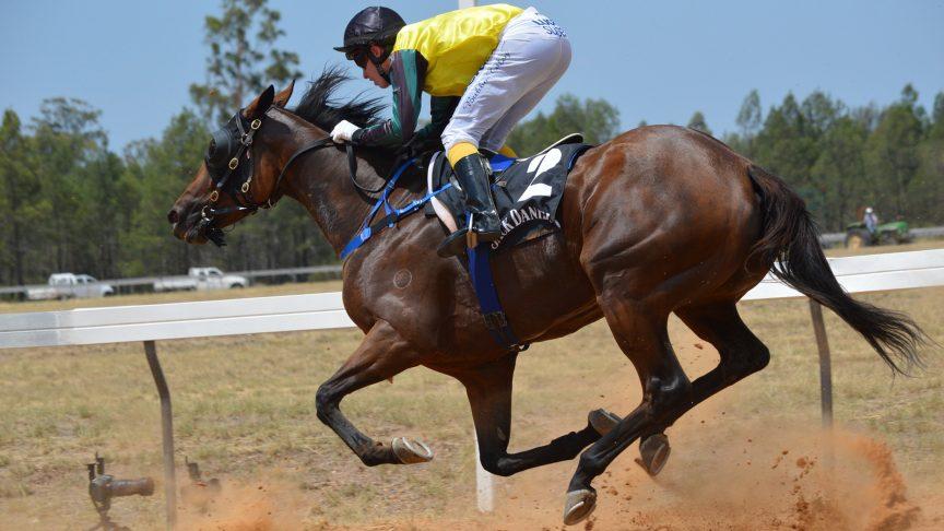 A jockey rides a horse.