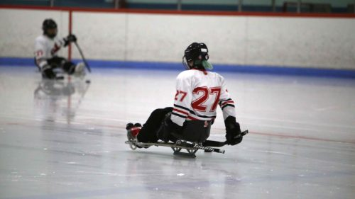 Sledge hockey player on the ice