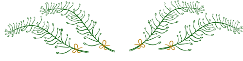 4 green ferns arranged in a horizontal fashion, with small yellow bows at the stems.