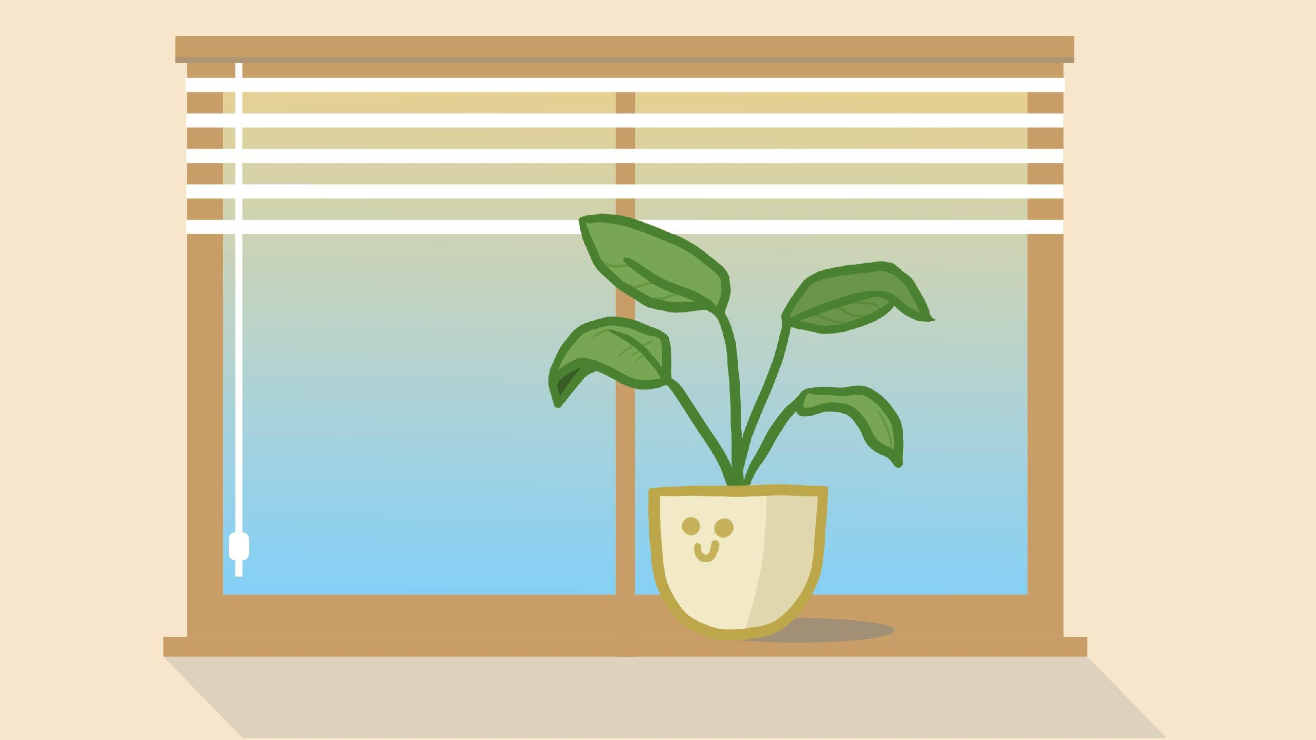 A house plant with a smiley face sitting on a window sill.